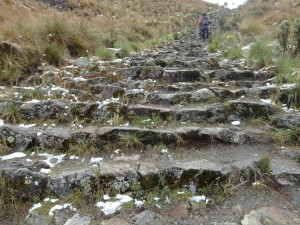 Long steep steps down to camp day 2 in the inca trail
