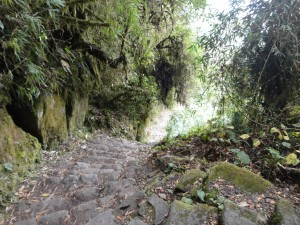 DAY 3 ON THE Inca trail