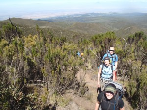 Hiking up Kilimanjaro on the Lemosho route