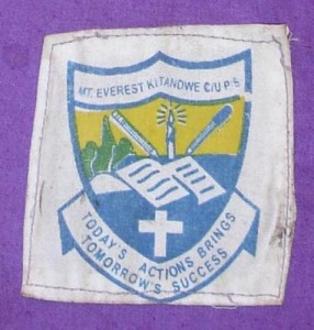 Everest school logo