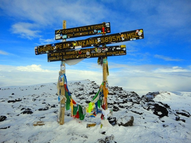 Kilimanjaro: 98% SUCCESS RATE