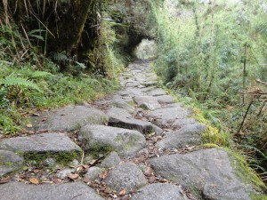 The hidden trail of the Inca's