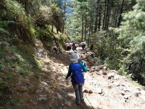 Coming down the Namche hill