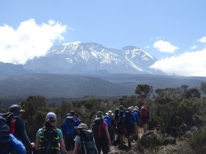 KILI SHIRA PLATEAU ON KILIMANJARO