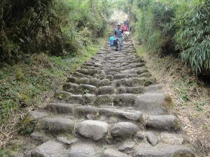 some of the 8000 steps on the Inca Trail to Machu Picchu