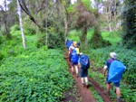 Distance traveled on the Machame route up Kilimanjaro