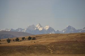 The trail into Mt. Tarija