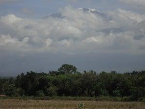 A view of Kilimanjaro