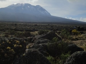 The summit of Kilimanjaro from the Shira Plateau