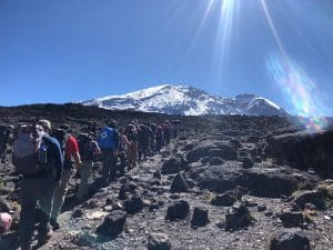Heading to the Lava Tower on Kilimanjaro