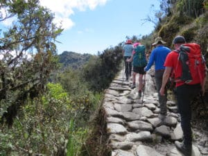 The sometimes uneven and rocky trail to Machu Picchu