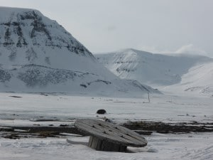 The raw landscape on Svalbard