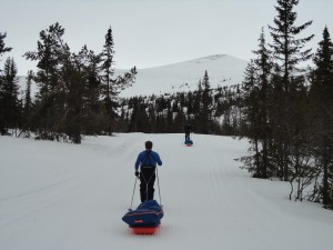 Norwegian mountain skiing