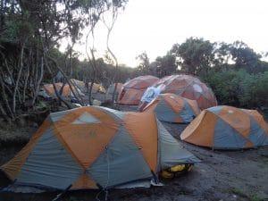 Mweka Camp on Kilimanjaro