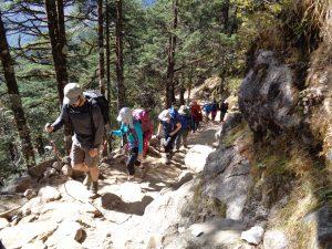 Trekking to Everest Base Camp