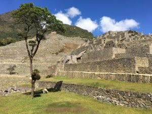 Classic 5 day Inca Trail Trek