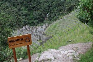 Wiñayhuayna close to Machu Picchu