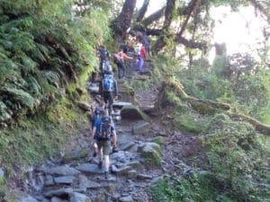 The Trek into Mera Peak