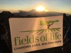 Fields of Life on Kilimanjaro