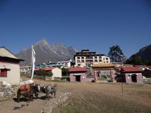 The Tengbouche Monastery
