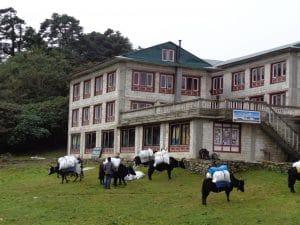 Tashi Delek lodge in Tengbouche