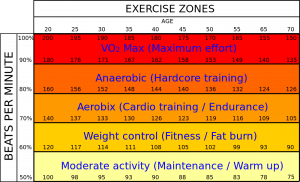Understanding heart rate zones for your trekking training