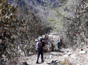 Trekking to Kanchenjunga