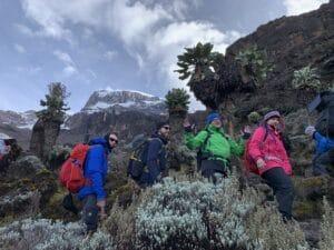 Day 5 on Kilimanjaro
