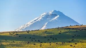The stunning Cotopaxi